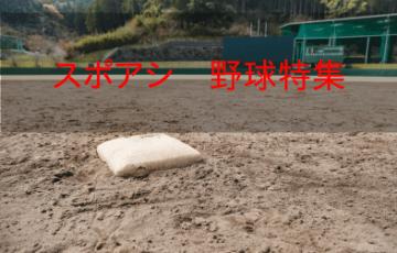 野球に関する参考画像