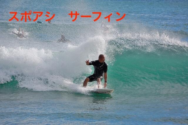 サーフィンに関する参考画像